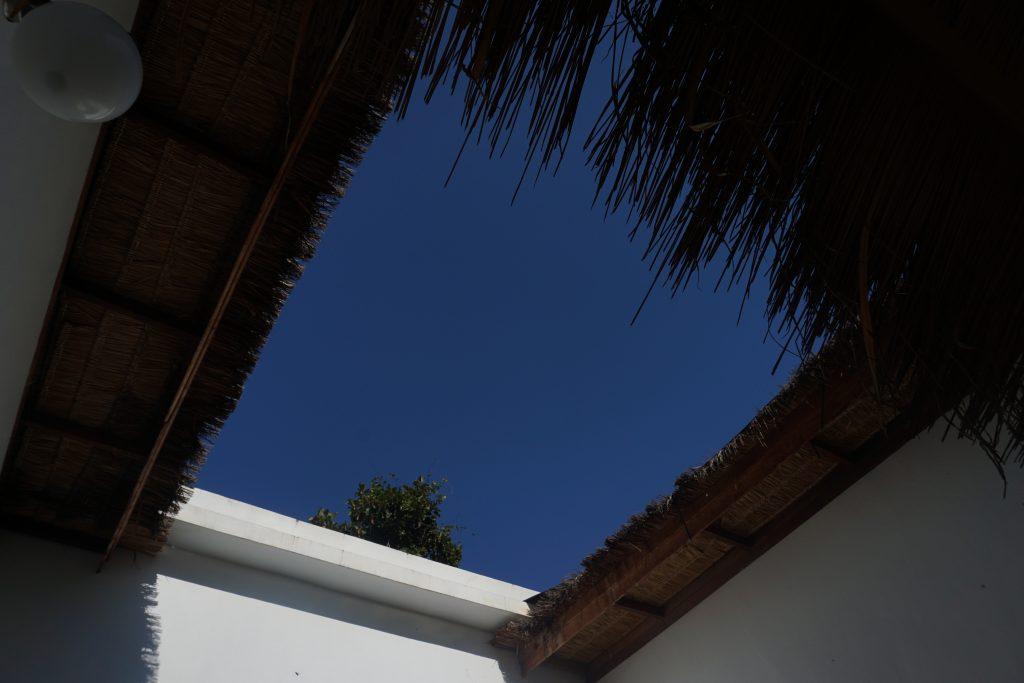 中庭から見える天井